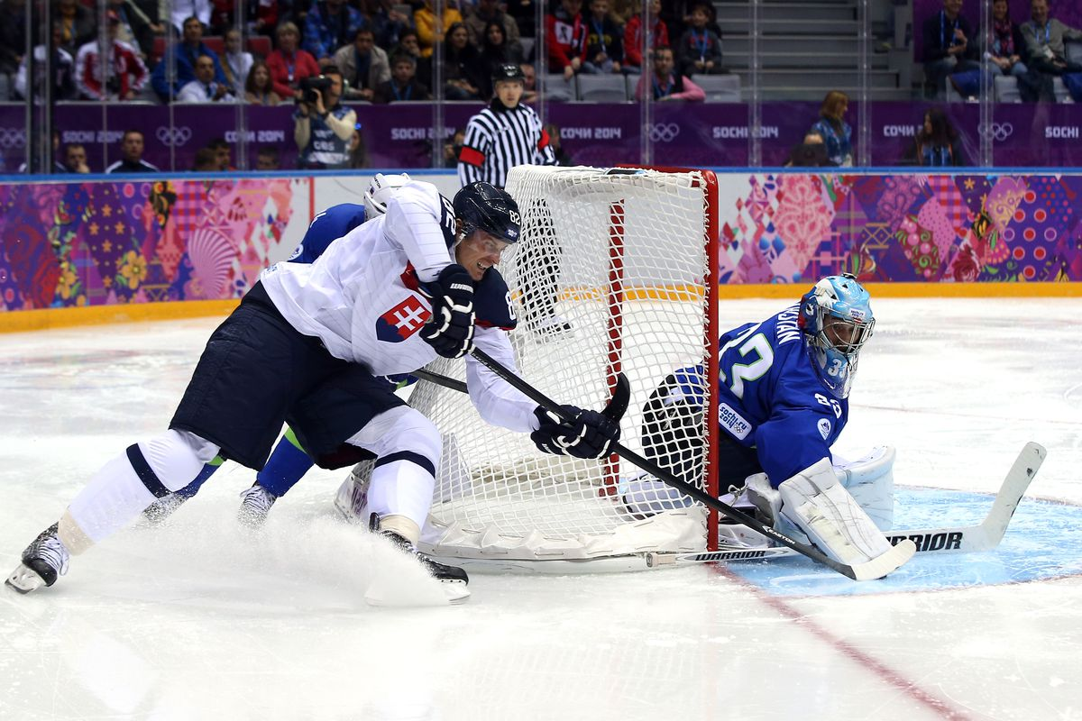 Tomas Kopecky suffered a head injury in Slovakia's loss to Slovenia.