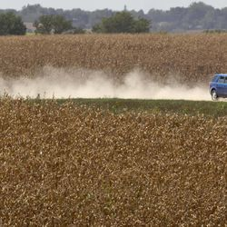 A vehicle kicks up dust amidst dry corn fields near Bennington, Neb., Thursday, Sept. 6, 2012. The remnants of Hurricane Isaac dumped heavy rain on some key Midwest farming states that dramatically lessened the drought there, but conditions worsened in two of the nation's biggest corn producers, Iowa and Nebraska, which missed out on the badly needed moisture, according to a drought report released Thursday.