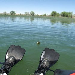 A float tuber works his way into position to land and then release a bluegill at Pelican Lake in June.