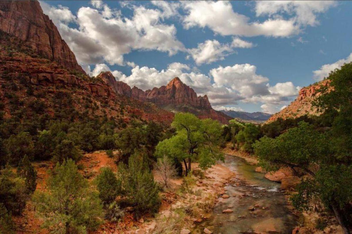 """FILE"""""""" Zion National Park"""