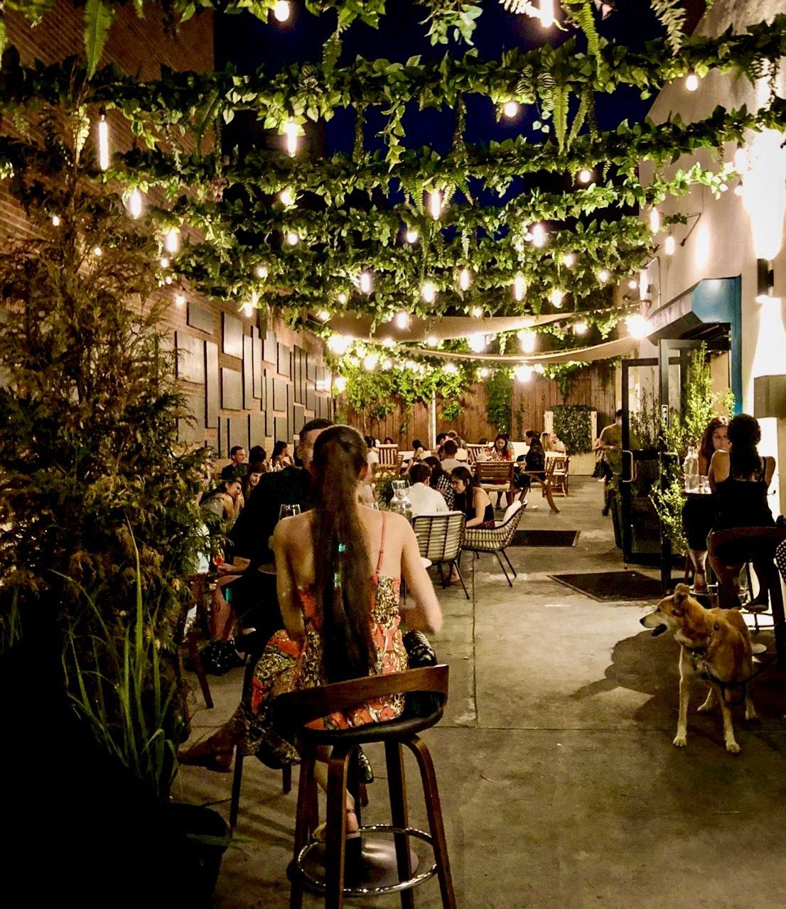 People sit at tables and chairs underneath greenery and string lights decorating an outdoor garden and dining area