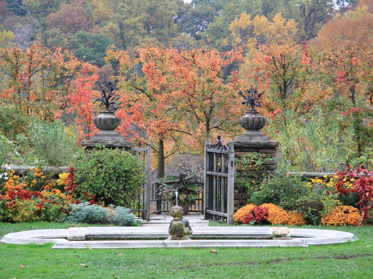 A open-air garden with a fountain in the middle. The surrounding trees have lots of fall foliage.