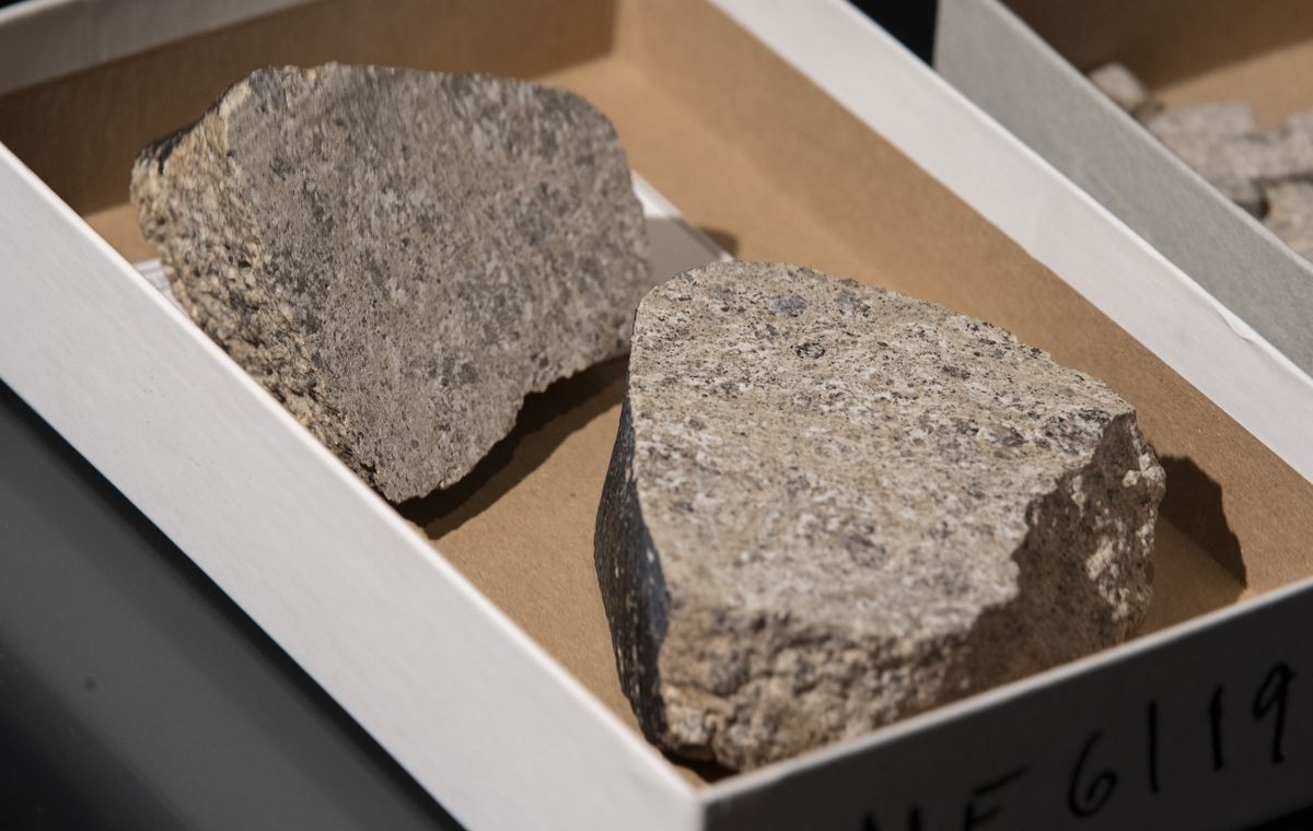 Samples of a meteorite identified as a piece of Vesta, the brightest asteroid visible from Earth, at The Field Museum. Wednesday, June 30, 2021.