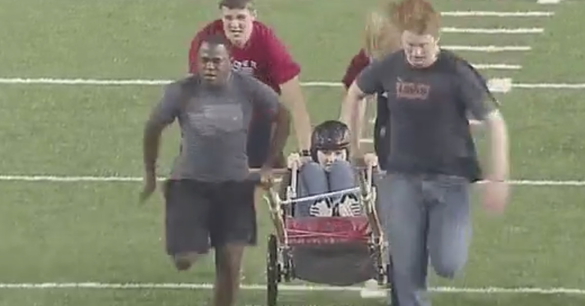 Watch WSU students race in human-powered chariots