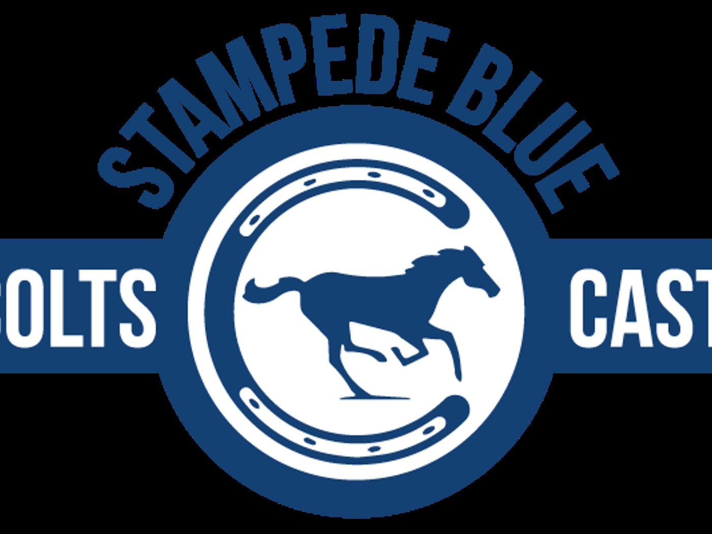 Colts Cast Colts 2020 Nfl Draft Recap Udfas Complement Draft Haul Stampede Blue
