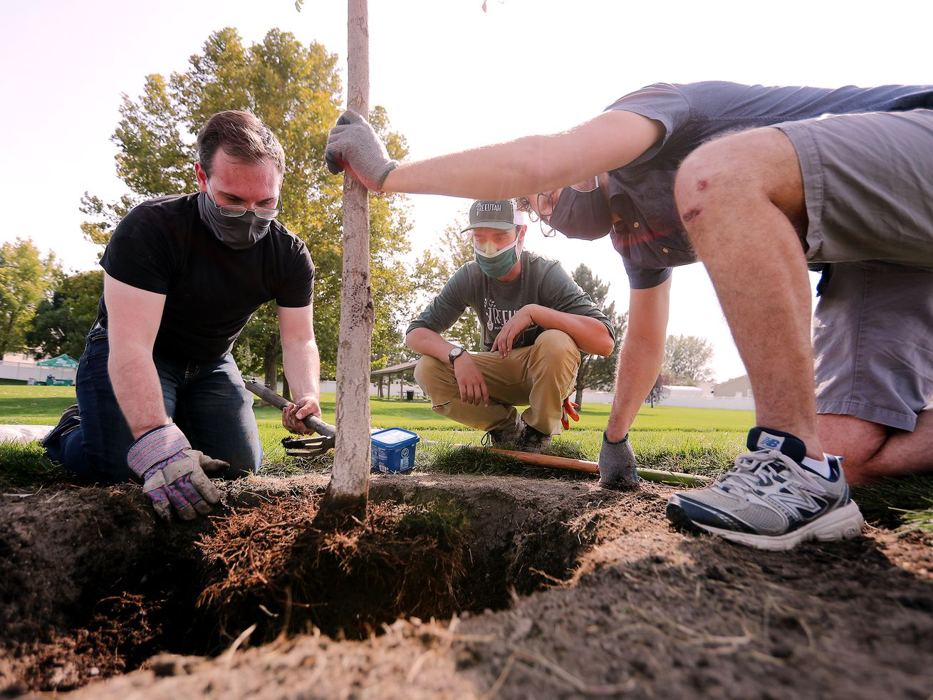 Volunteers, TreeUtah join forces to help 'green up' Lehi's Sommerset Park