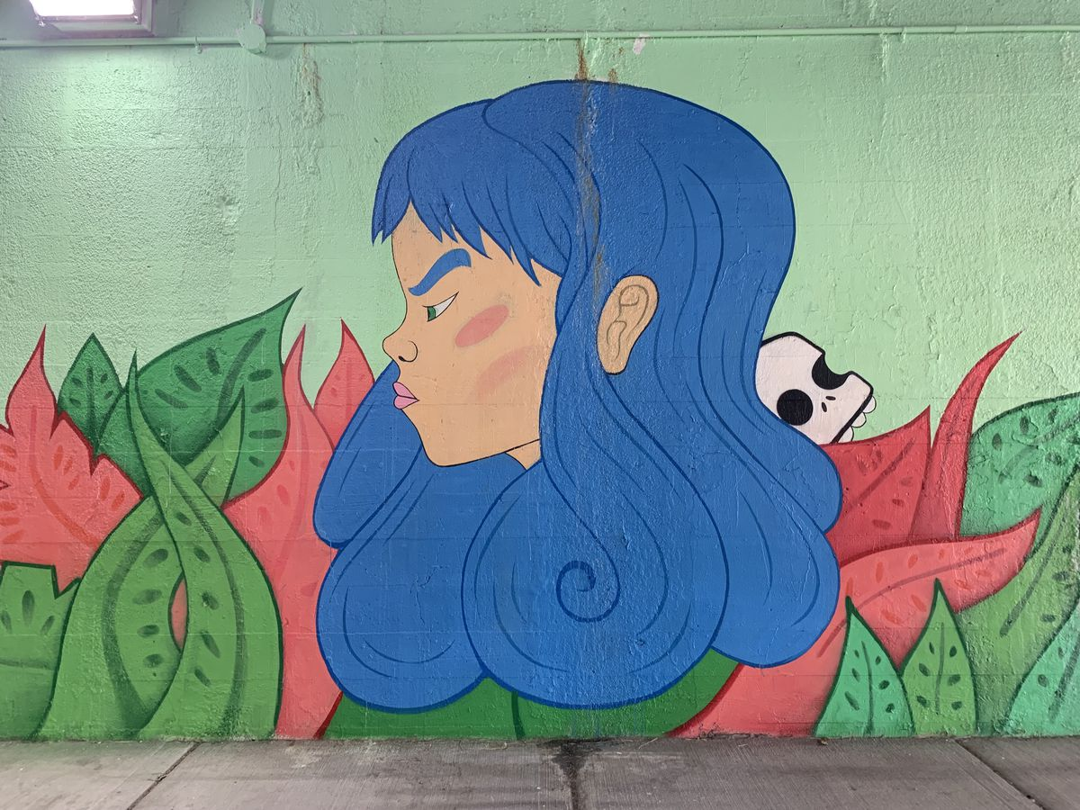 """Little Village artist Jay Jasso featured a character he calls Warrior Princess, """"an homage to women who struggled, overcame and things like that."""" The girl has """"a furious look on her face but with a very colorful background, vegetation — meaning life."""" The skull is also a nod to his Mexican heritage and the Day of the Dead holiday."""