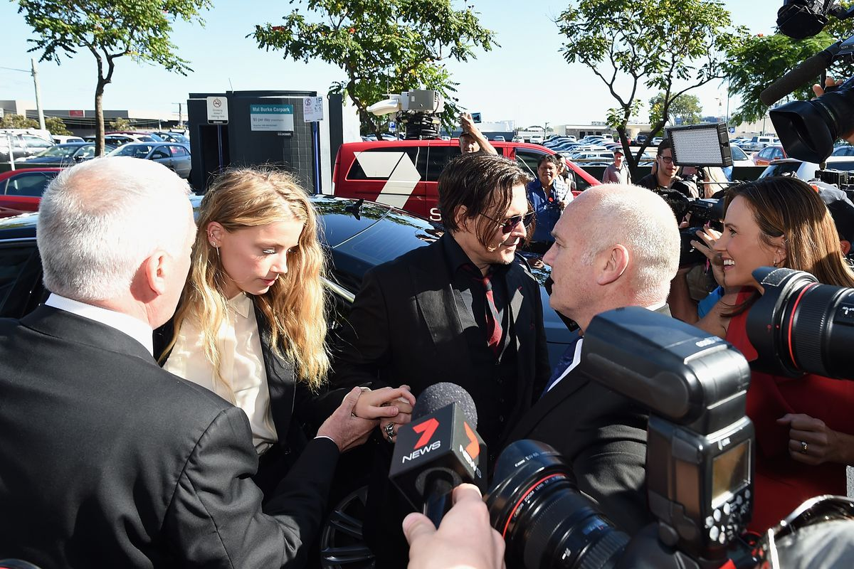 Amber Heard Faces Trial In Gold Coast Court For Smuggling Johnny Depp's Dogs Into Australia
