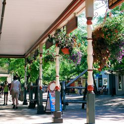 With its shade trees, flower baskets, sitting areas and covered boardwalks, Lagoon?s Pioneer Village provides an excellent respite from the hubbub common along the park?s midway and thrill-ride areas.