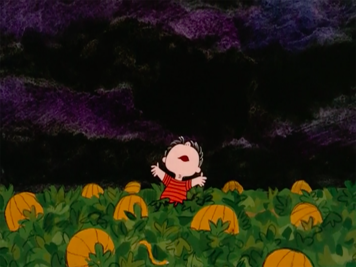 linus wails in the pumpkin patch not pictured the great pumpkin abc