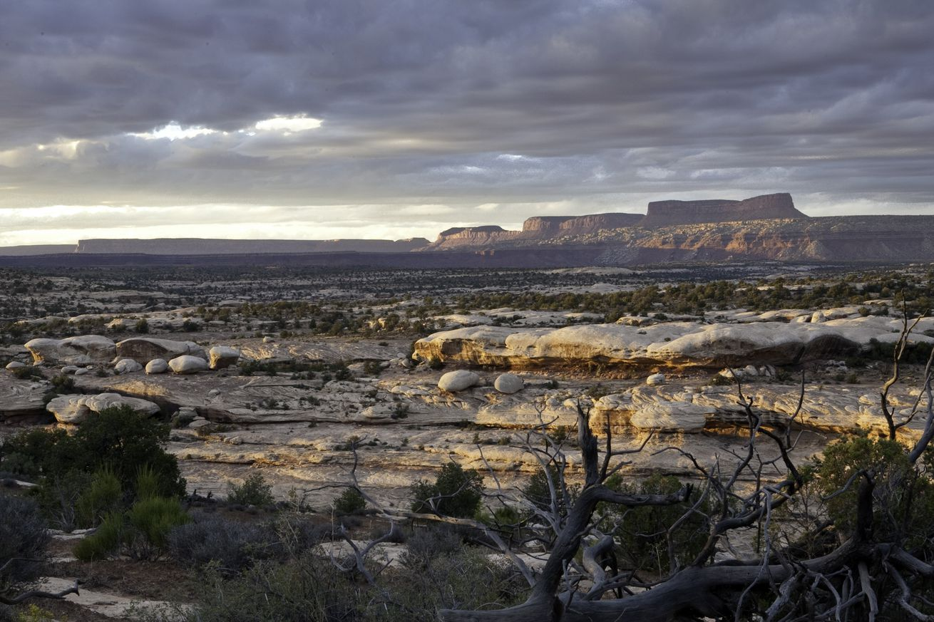 donald trump makes history with massive cuts to utah s national monuments