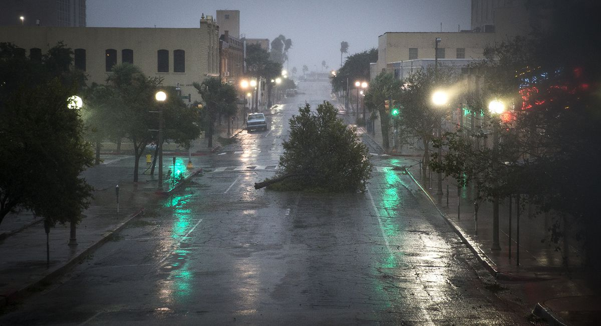 A tree blocks a street as Hurricane Harvey makes landfall in Corpus Christi. Hurricane Harvey smashed into Texas late Friday, lashing a wide swath of the Gulf Coast with strong winds and torrential rain from the fiercest hurricane to hit the U.S. in more