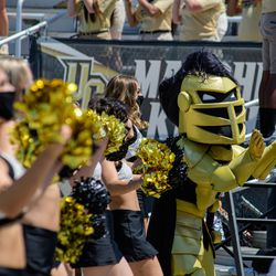 Knightro approves of this photo gallery.