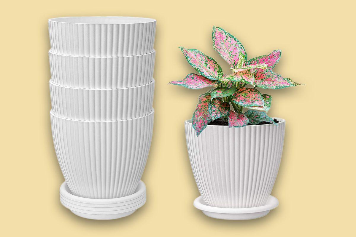 Decorative Gardening Pots