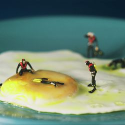 Fried Egg, Willy Rojas