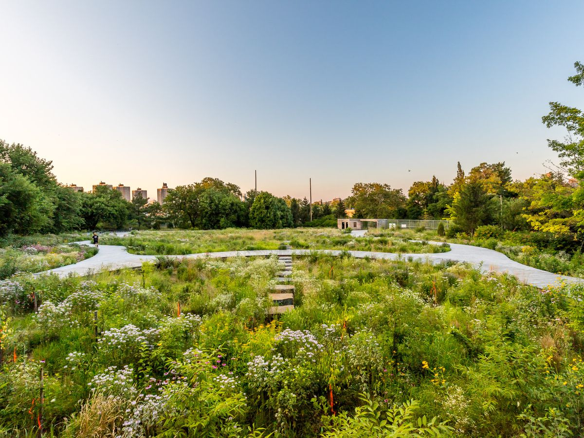 New York City S Best Secret Gardens And Hidden Parks Curbed Ny