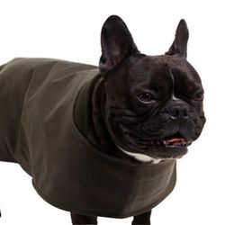 "<a href=""http://trovegeneral.com/shelter-cloth-dog-coat/dp/10277"">Filson Shelter Cloth Dog Coat</a>, $70 at Paoli's Trove General"
