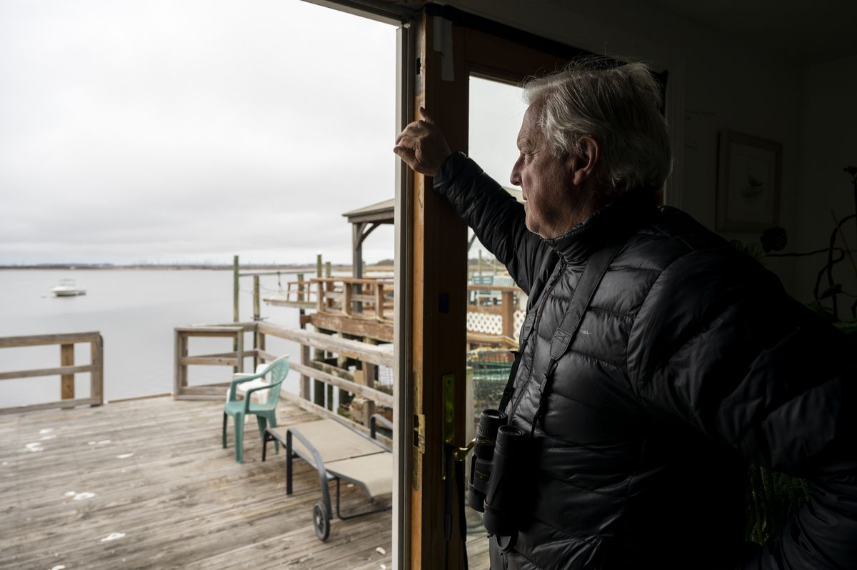 Don Riepe looks out his back door for a seasonal egret appearance.