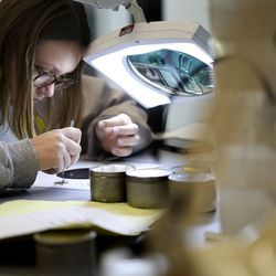 Vector control intern Abby Pickett sorts mosquitoes by type at the Salt Lake Mosquito Abatement District laboratory in Salt Lake City on Thursday, May 27, 2021.