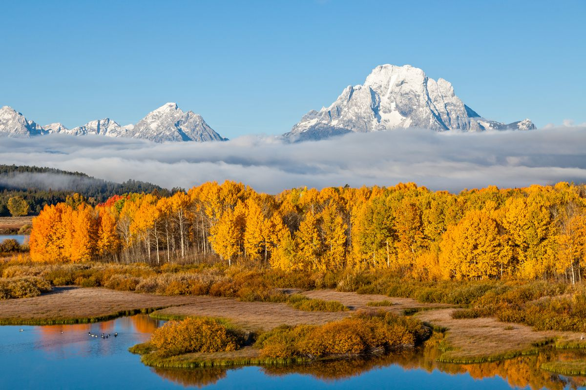 In the foreground are trees with colorful autumn leaves. In the background are mountains and clouds.
