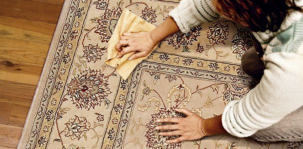 Person removing stain from carpet with cloth.