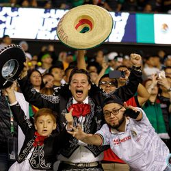 July 7, 2019 - Chicago, Illinois, United States - Mexico fans celebrate as Mexico defeated USA 1-0 to win the Gold Cup Final at Soldier Field.