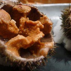 "Urchin on the halfshell at Miyake (Portland, ME) by <a href=""http://www.flickr.com/photos/79900441@N03"">Yodi2012</a>."