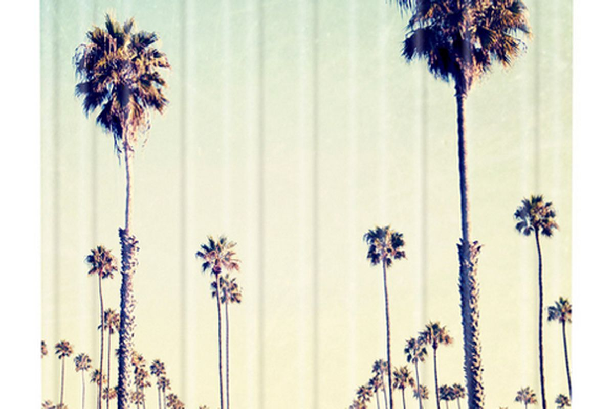 """California Palm Trees shower curtain, <a href=""""http://www.denydesigns.com/products/bree-madden-california-palm-trees-shower-curtain"""">$89</a> at Deny Designs."""