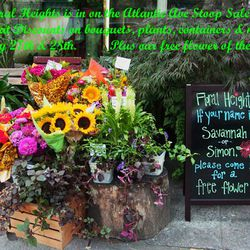 """Arrangement from <a href=""""http://www.floralheights.com/index.html"""">Floral Heights</a>, which is offering discounts on bouquets, plants, containers, and more, plus a free flower for the chosen names of the day"""