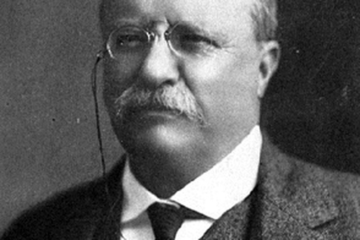 Donald Trump, like Theodore Roosevelt, is in the party but not of ...