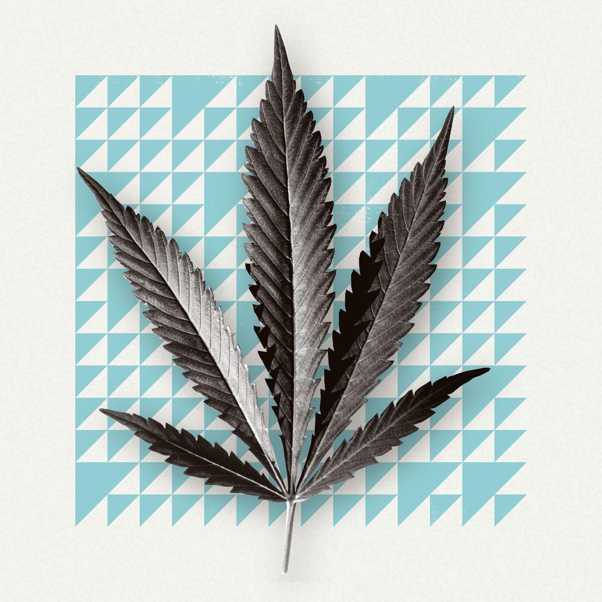 A photo illustration featuring a marijuana leaf.