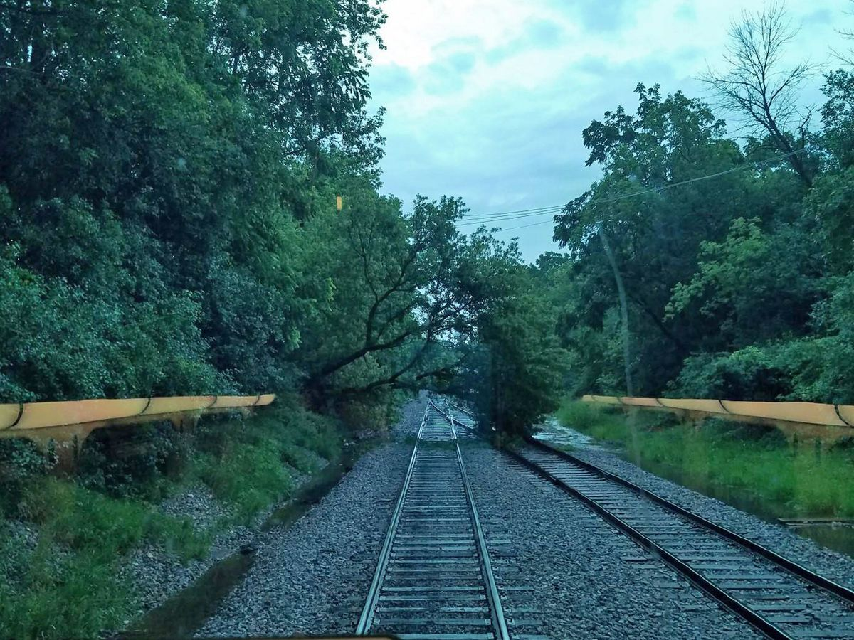 A downed tree near Libertyville and flooding nearby halted service on Metra's Milwaukee District North line Wednesday morning. | Metra photo