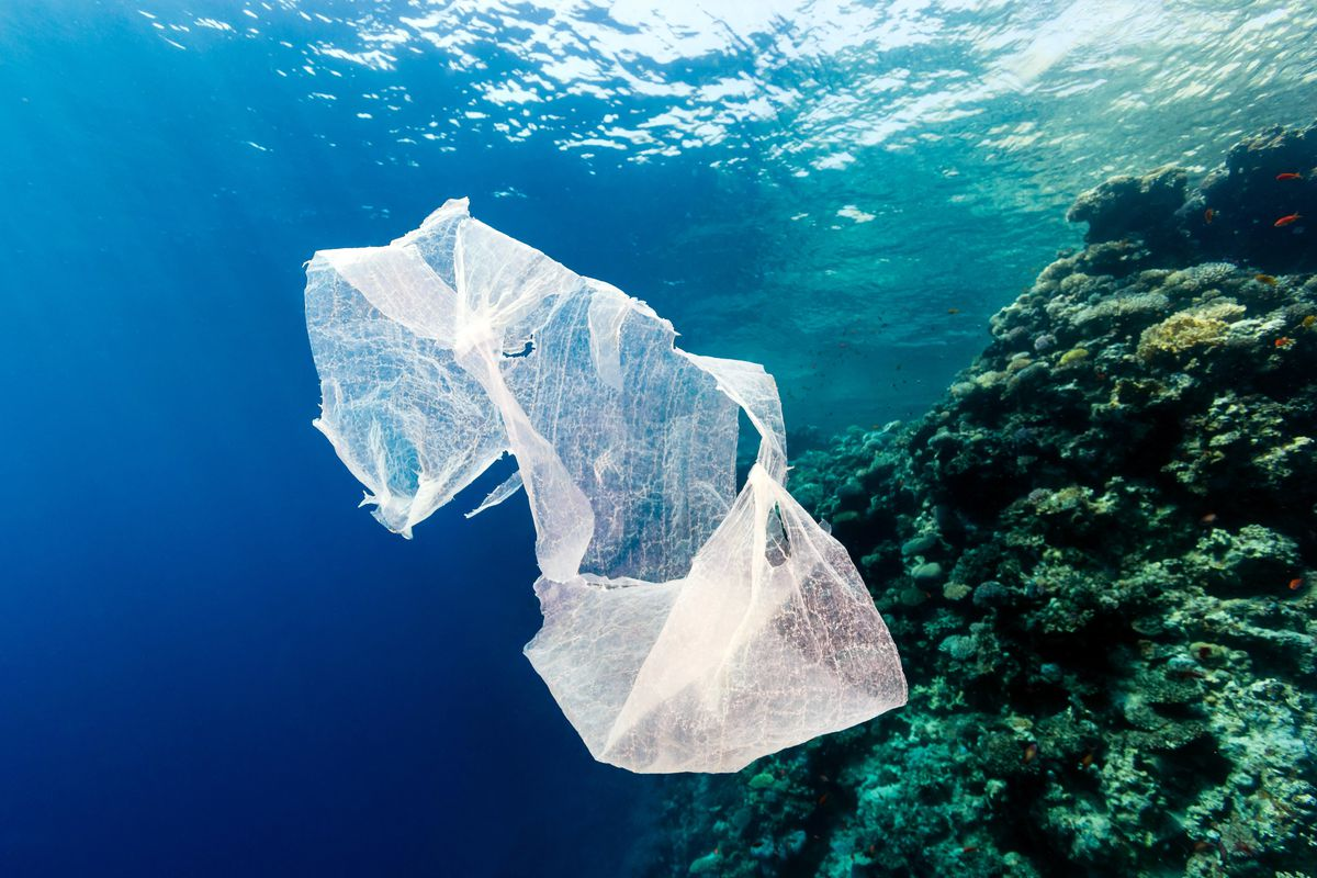 A Discarded Plastic Bag Drifts In The Ocean Next To Tropical C Reef Photo By Richard Whitcombe Alamy