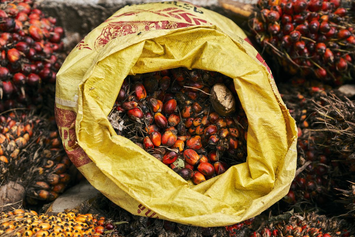 A sack filled with palm fruit