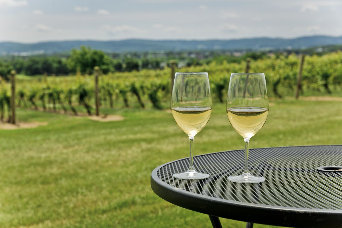 two glasses of wine on a table in a vineyard