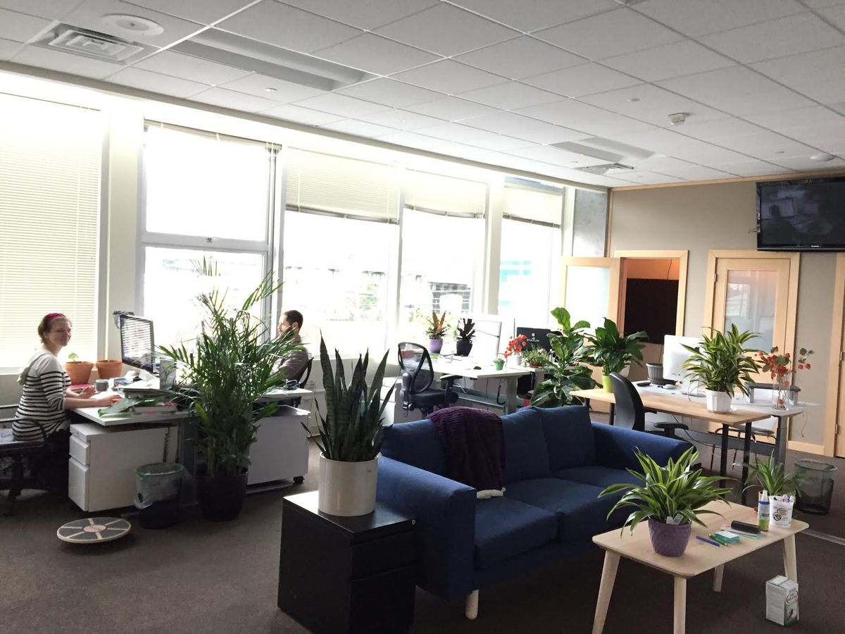 The inside of an office. At the foreground there's a blue couch at a light-colored coffee table, and along a back wall full of windows are several desks with people working at them.
