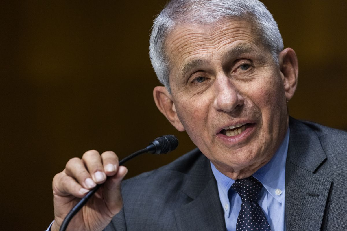 In this May 11, 2021, file photo, Dr. Anthony Fauci, director of the National Institute of Allergy and Infectious Diseases, speaks during hearing on Capitol Hill in Washington.
