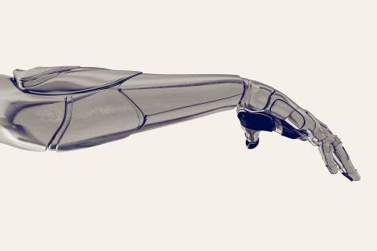 robot arm (ted)