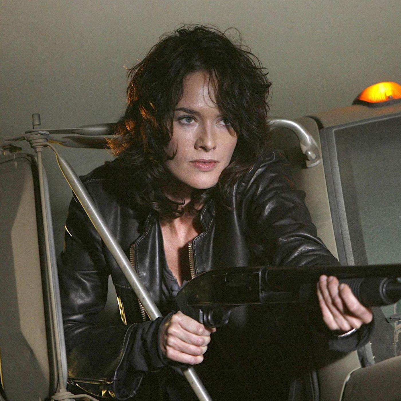 Terminator: The Sarah Connor Chronicles (2008-2009)