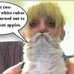 "[<a href=""https://twitter.com/RealBobMortimer/status/335751207412957186/photo/1"">Catbeard Photo</a>]"