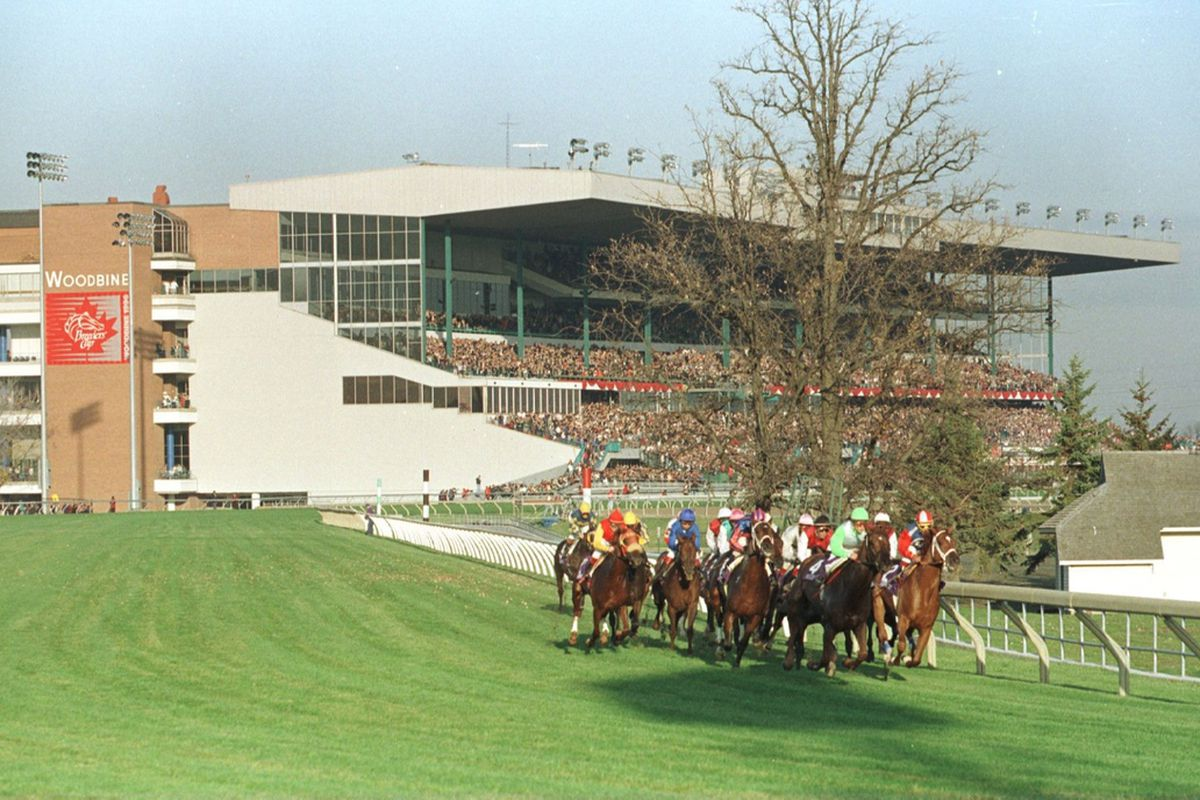 This is the only picture I could find of the Woodbine grandstand. Yeah, it's a turf race. What ya gonna do?
