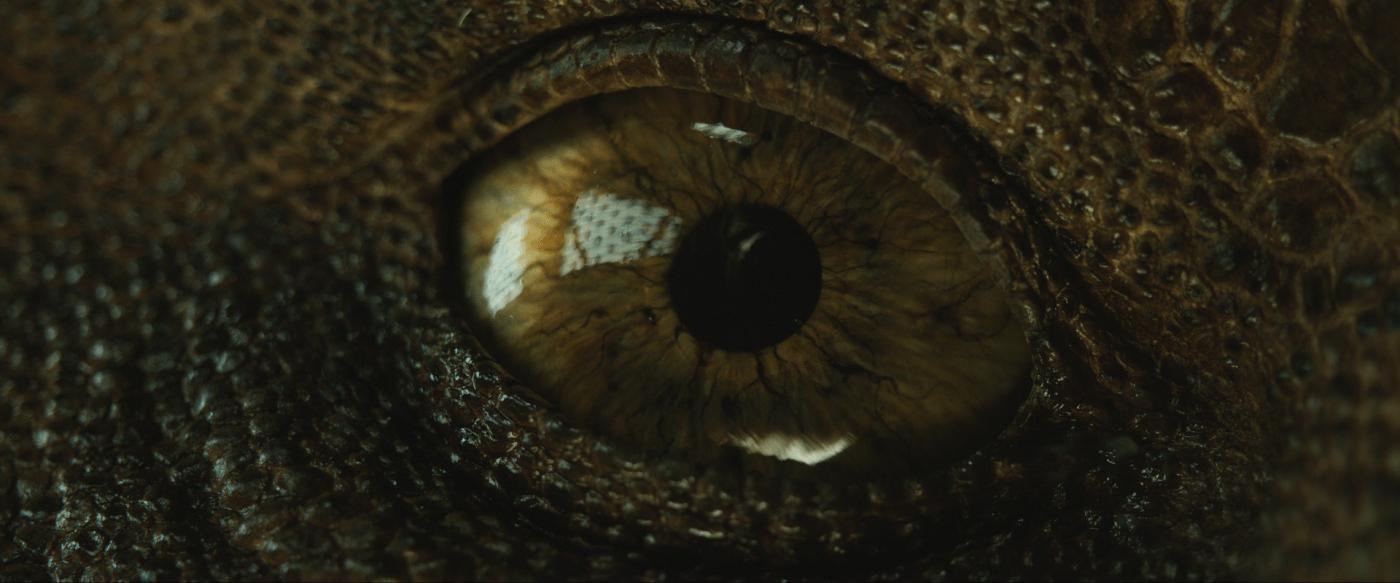 Jurassic World: Fallen Kingdom: 5 things to know - Vox
