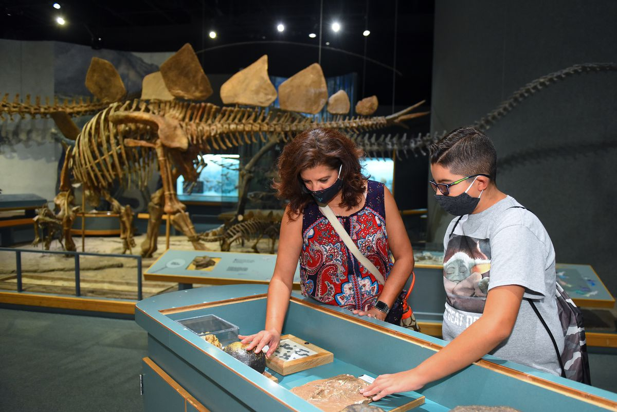A photo of a woman and a child, both wearing face masks, interacting with an exhibit at the Denver Museum of Nature & Science
