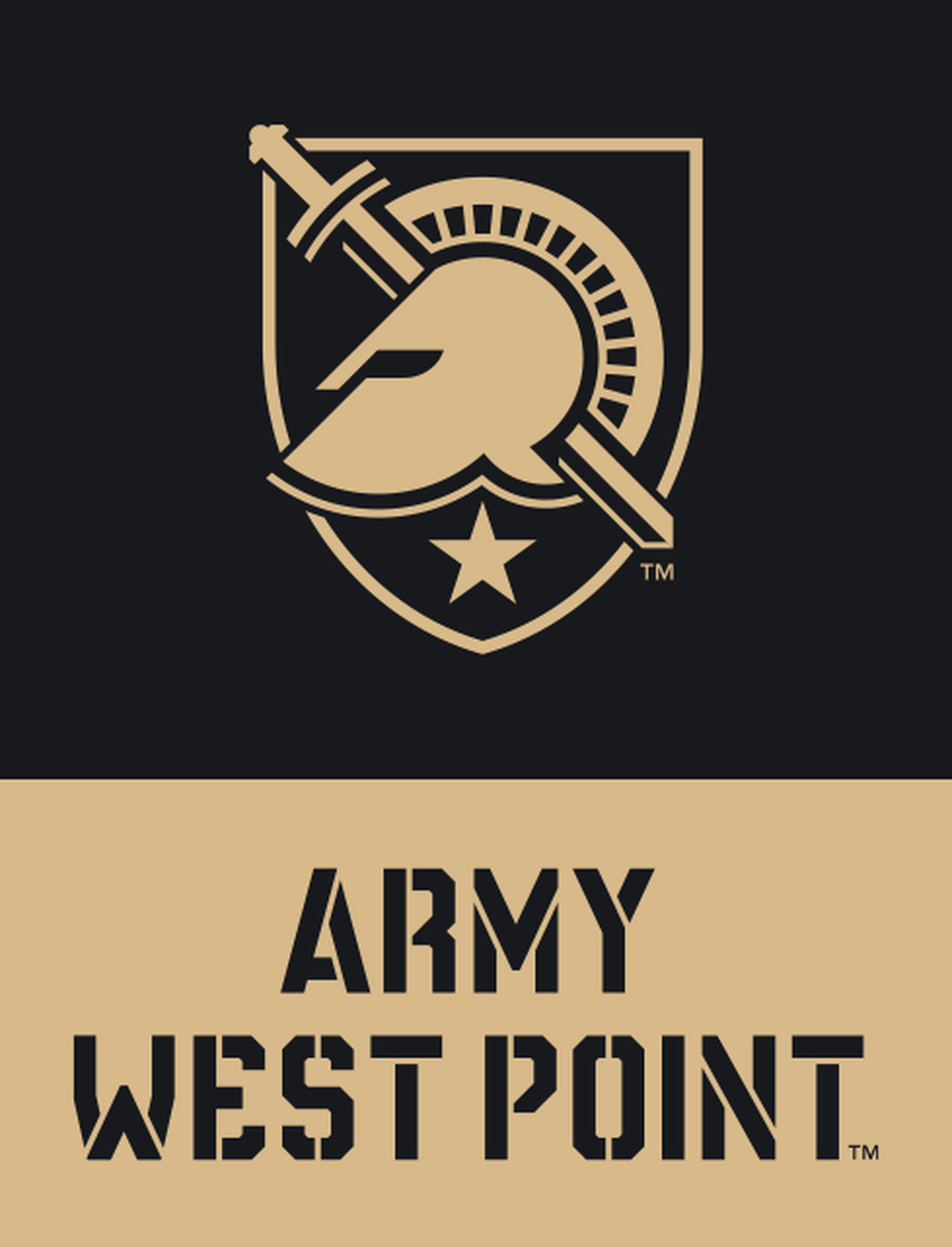 Cool new Army athletics logo pays tribute to 'soldier ...
