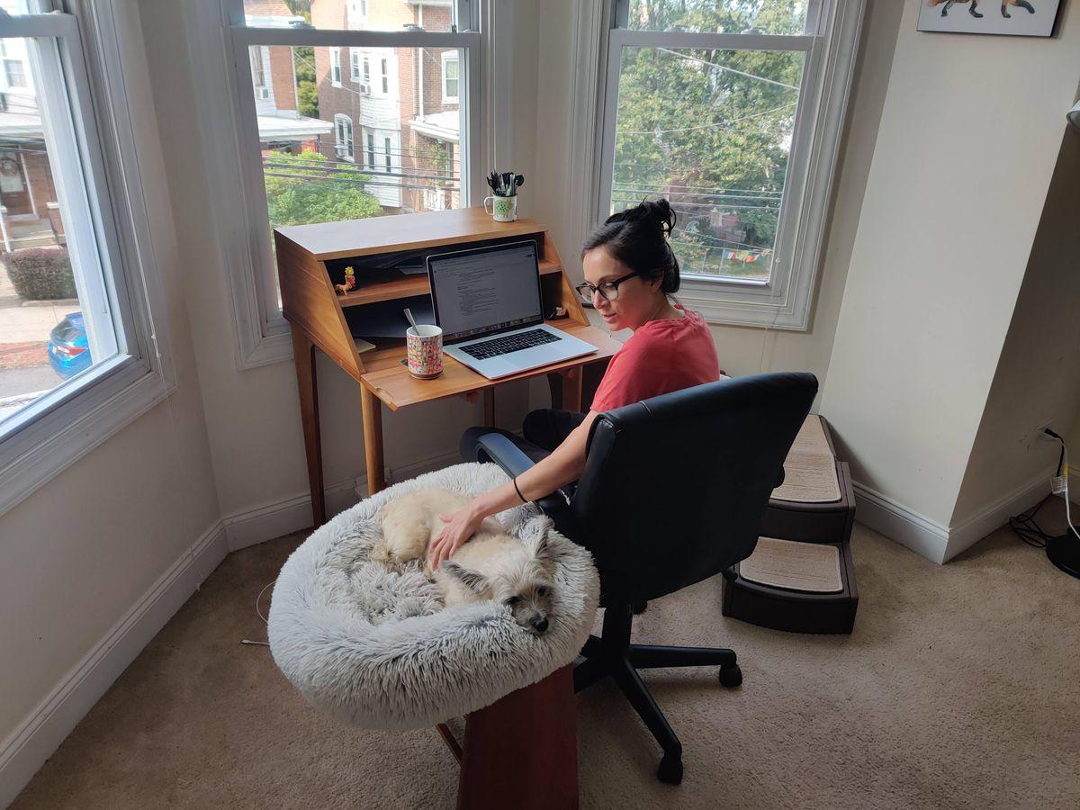 Clara and Alfie at work