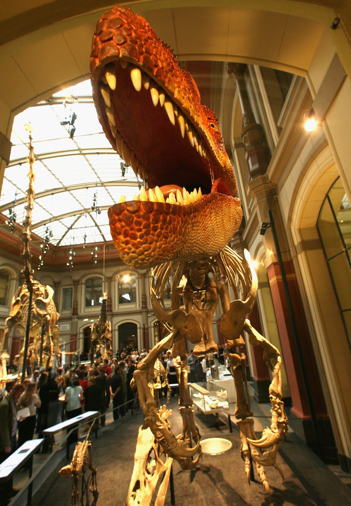 Reopening Of Natural History Museum In Berlin