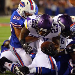 Aug 16, 2013; Orchard Park, NY, USA;  Minnesota Vikings running back Joe Banyard (23) scores a second half touchdown during the second half at Ralph Wilson Stadium.  Buffalo defeats Minnesota 20 to 16.