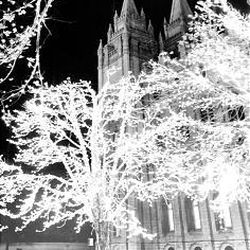 With little snow but lights glowing, the second annual Christmas lights on Temple Square are ablaze in December 1966.