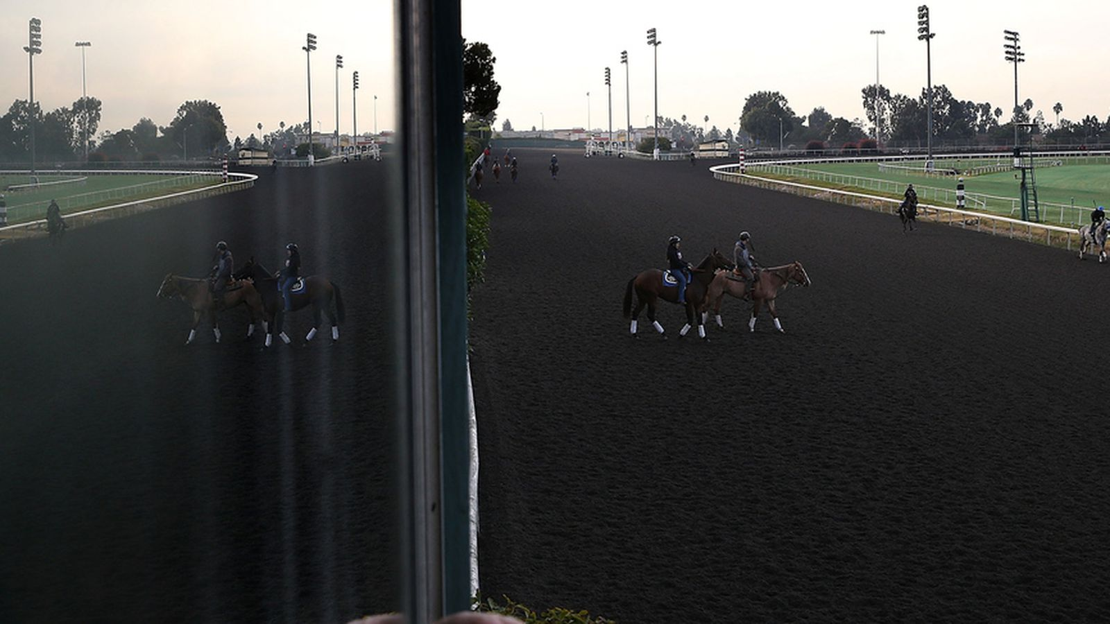 Goodbye Hollywood Park And Down The Stretch They Come