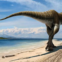 A new species of dinosaur dubbed the King of Gore was disovered at the Grand Staircase-Escalante National Monument in Utah and was announced Wednesday at the Natural History Museum of Utah. The species is related to the Tyrannosaurus rex.